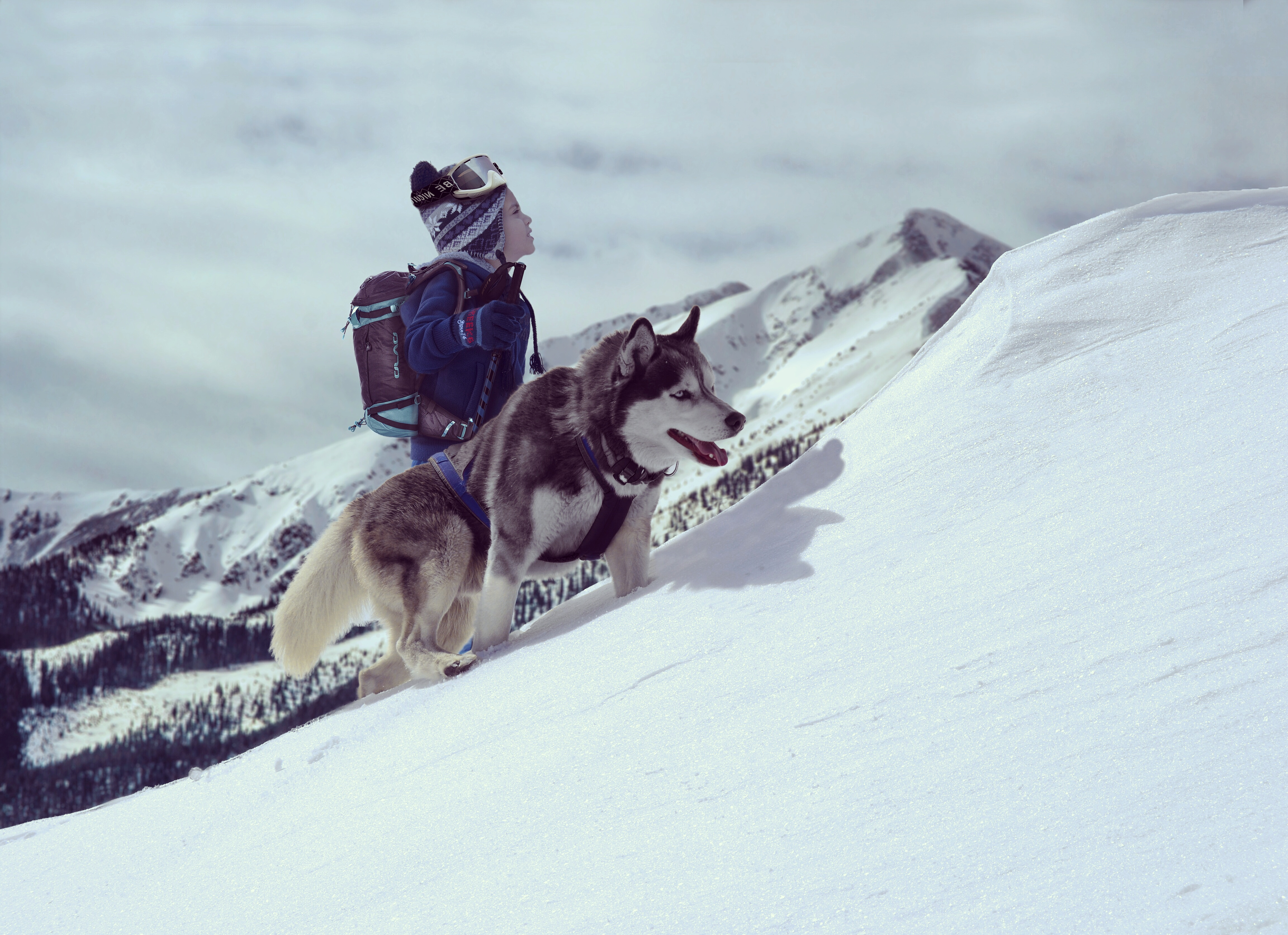 Bro and his Husky exploring snowy mountains by beseektas