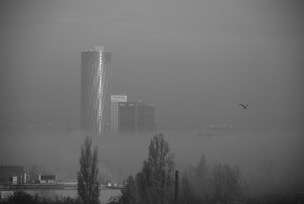 Foggy Sky tower by PurplePoisonDust