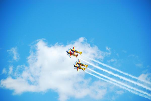 Hawks of Romania by PurplePoisonDust