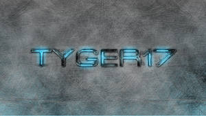 Tyger17
