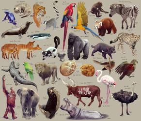 Zoo Art Challenge