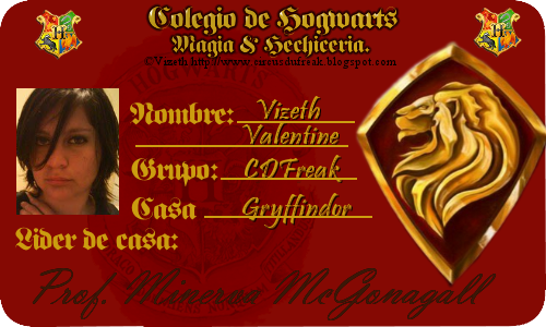 Gryffindor Gft by Vizeth