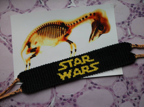 Friendship Bracelet, star wars