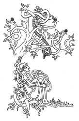 Celtic Tree by jpmorrow