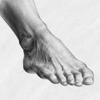 Foot Study by ELEFTHERIA-ARTS