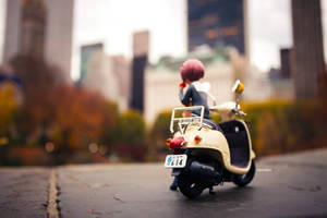 Shiozaki Autumn by frasbob