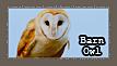 Barn owl Stamp by tsubasa-no-tenshi22