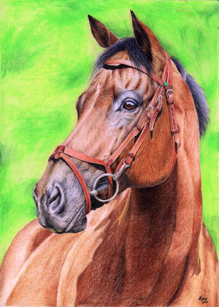 Horse portrait by xClarXCheex