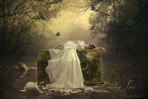 .:Forsaken Love:. by SummerDreams-Art