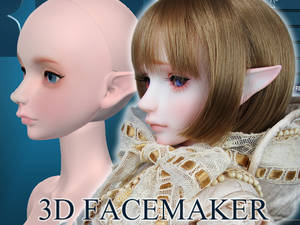 -3D FACEMAKER- 3D printed Face and Head 1/3 Scale