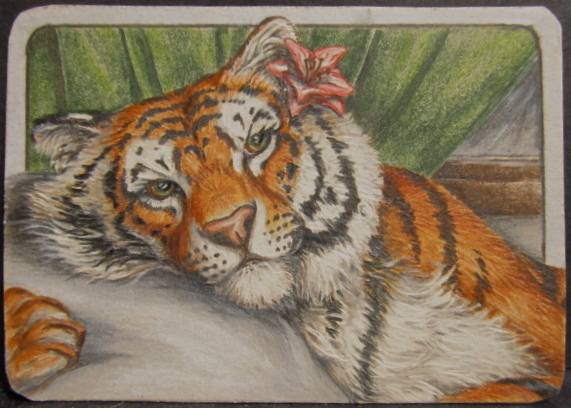 Remembering his face  (ACEO) by teiirka