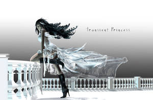 Transient Princess