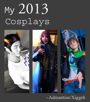 2013 Cosplays