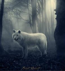 Forest Spirit by lady-amarillis