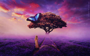 Violet Dream by lady-amarillis