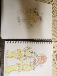 Bowser drawings