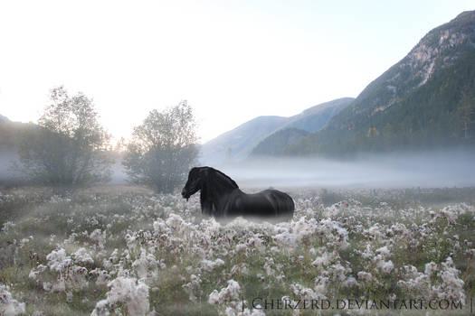 .: A Phantom Among The Flowers :.
