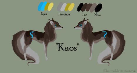 Kaos - 001