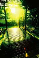 secret garden2 by puxxie