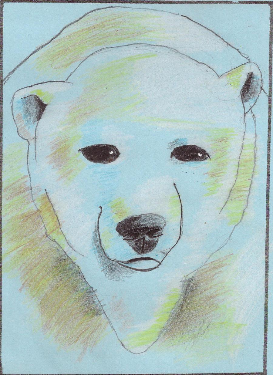 polar bear drawing by ichimokuren10 on deviantart