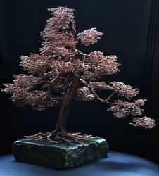 Full Tree Number 12 by Arakhlin
