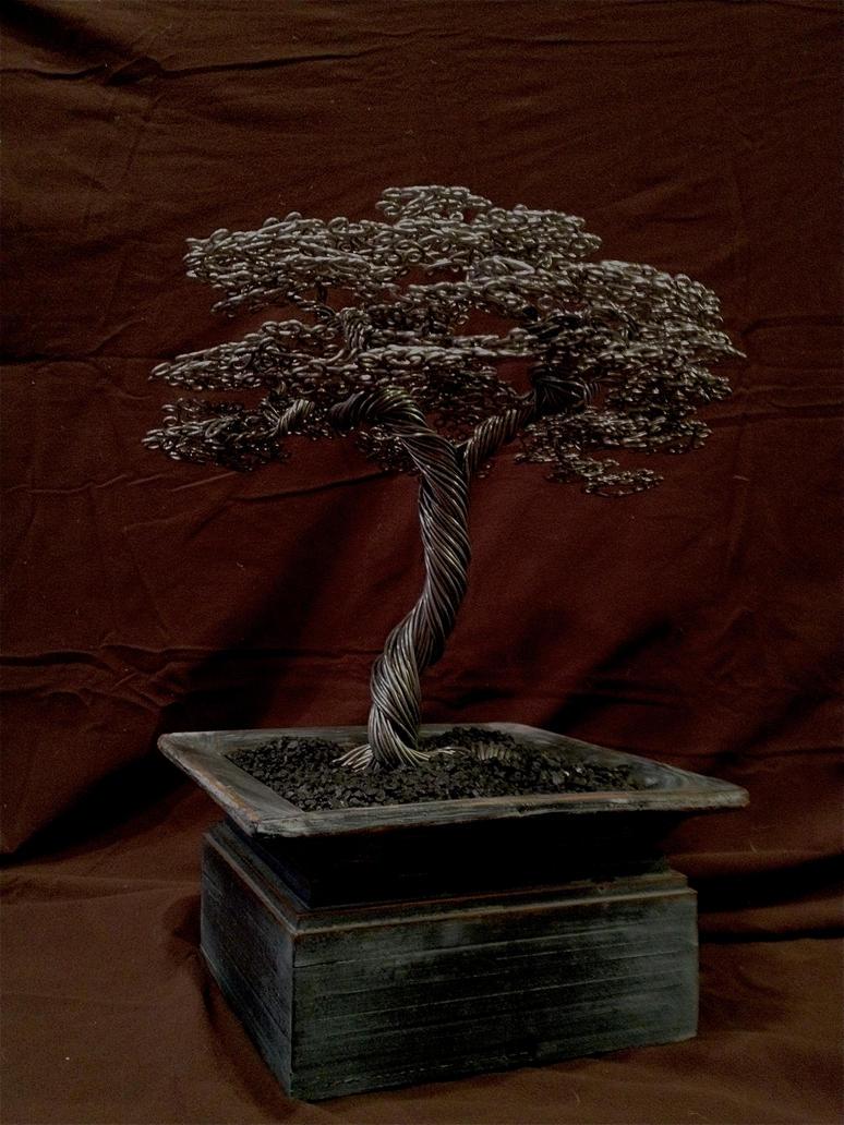 Oki chinoko bonsai by Arakhlin