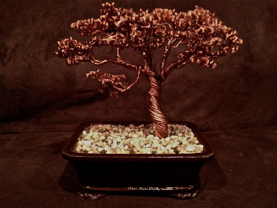 Soft Tree by Arakhlin