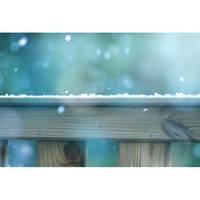 Snowood by HenrirneH
