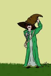WERT the Wizard