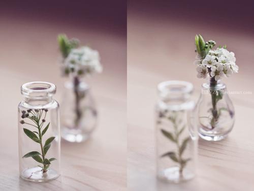 botany by hayzy