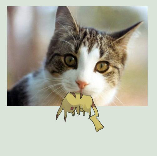 Secret-Pikachu's Profile Picture