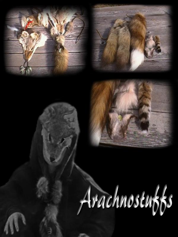 ArachnoStuffs's Profile Picture