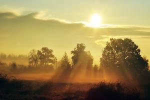 Dawn by kelhus