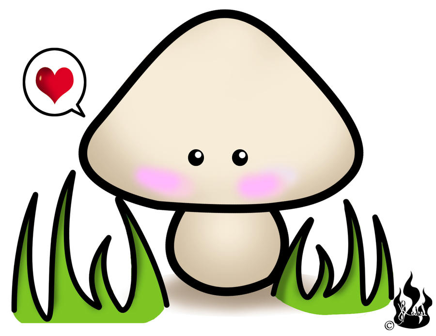 Mushroom by SETO-KAIBA-LIFE