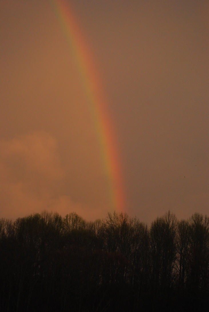 Rainbow by Wolfegard