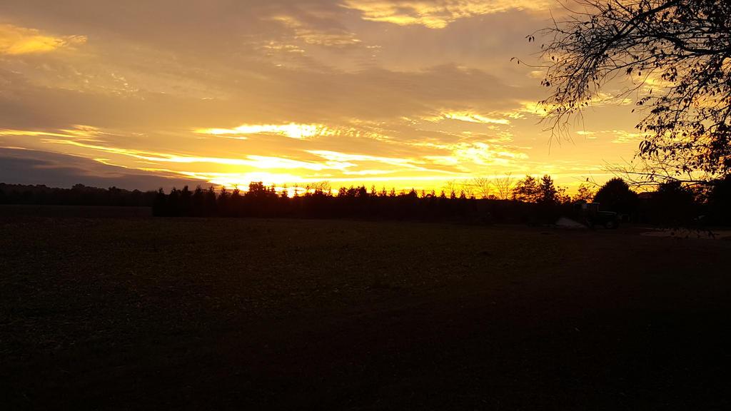 A Fall Sunset  by Wolfegard