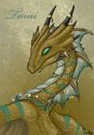 Tami Watercrest the Bronze Dragon