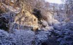 Jesmond Dene Water mill
