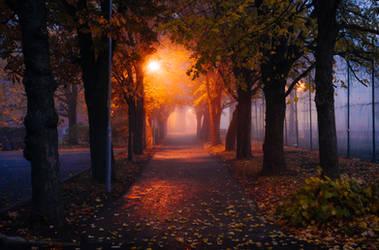 foggy alley by dzorma