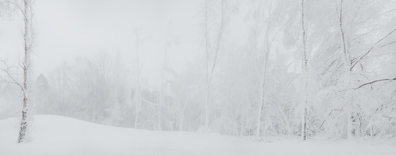 winter minimalism by dzorma