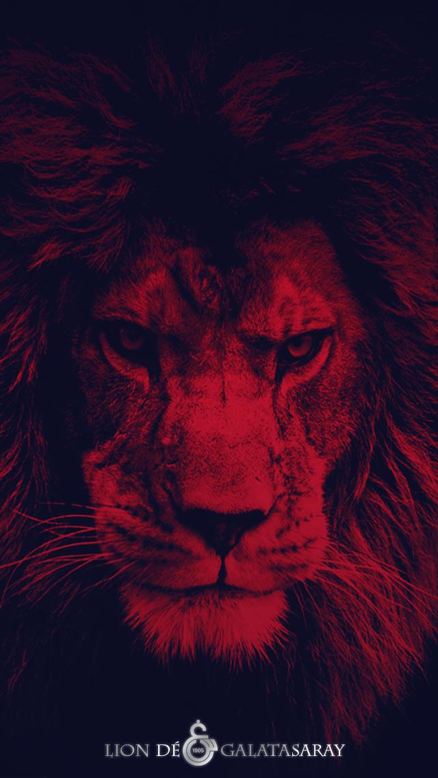 Lion De Galatasaray Smart Phone Wallpaper Hd 2 By Tsgraphic