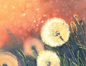 Dandelion Dust by indigoatmosphere