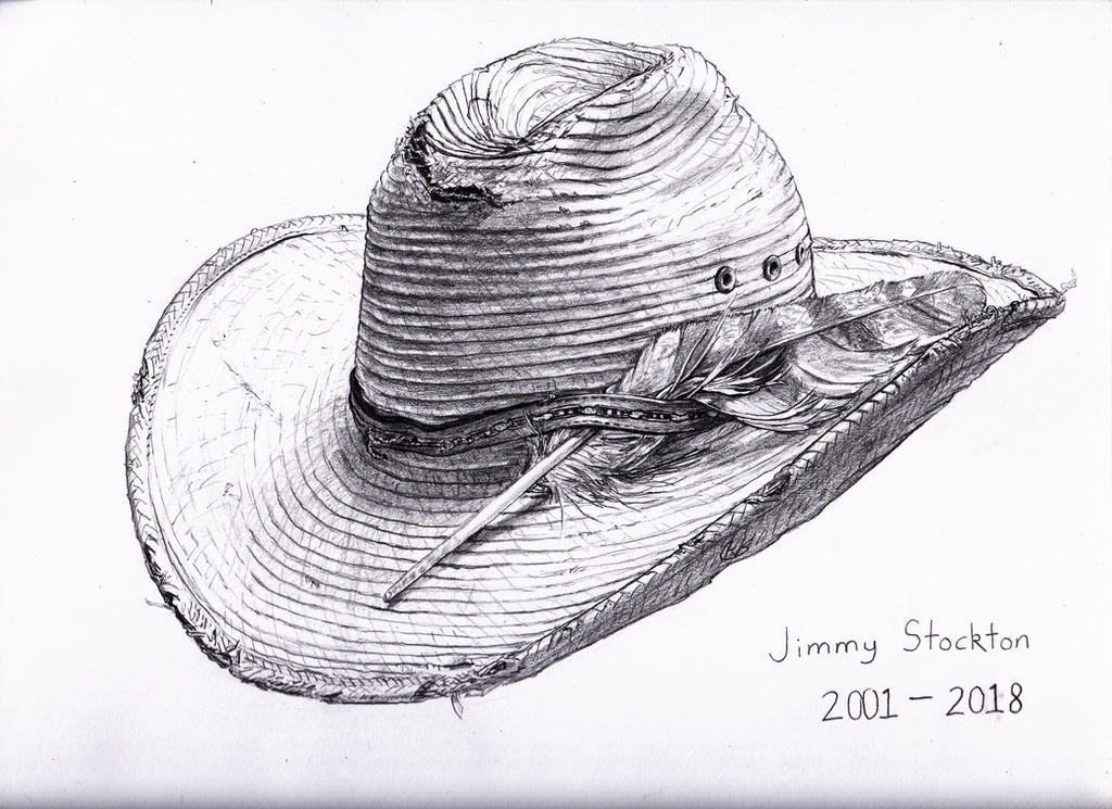 Jimmy's Hat by Wisdom-Thumbs