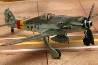 1/72 Fw 190 D9 Tamiya 4./JG301 by Pyranose