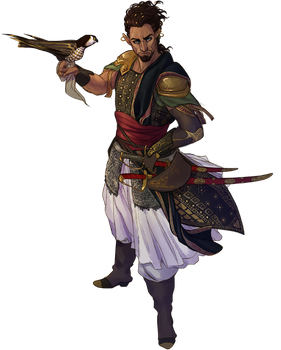 AA: The Amir