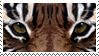 Tiger Stamp by MariaKoch