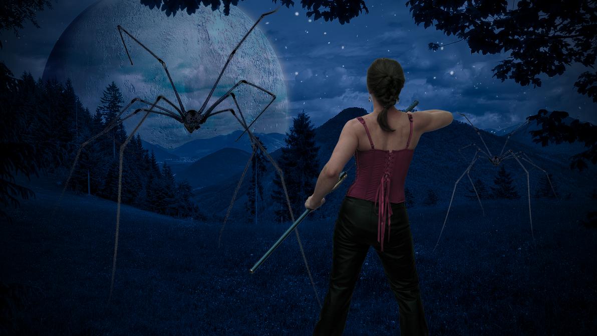 Spiders by kado897