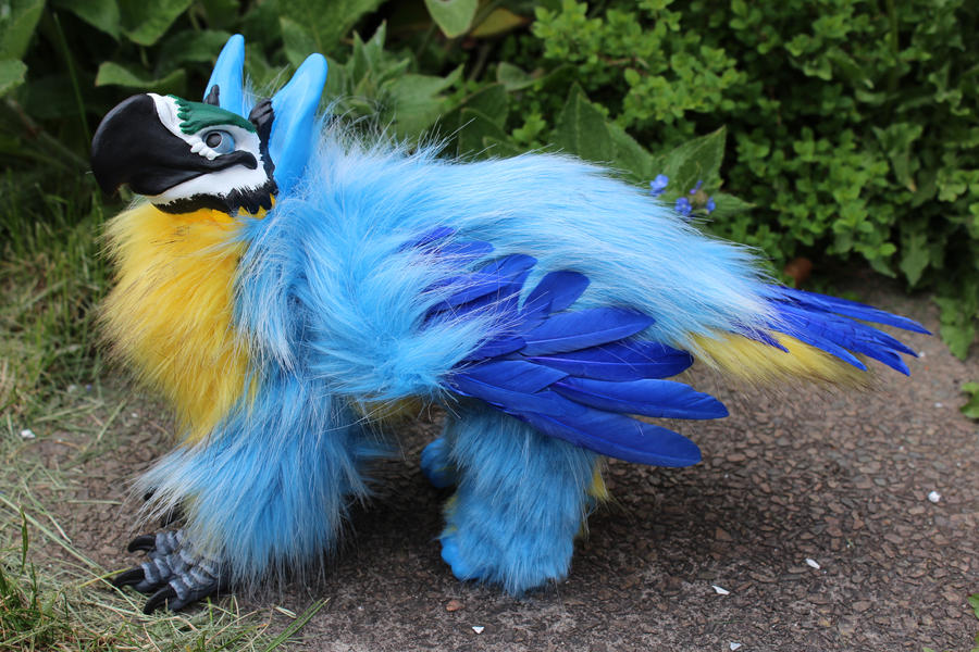Blue and Gold Macaw Griffin by Creature-Cave on DeviantArt