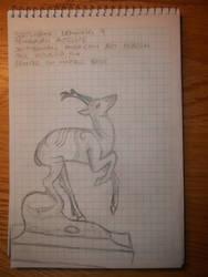 Drawing 9- Pronghorn Antelope by NerdyRabbitCreations