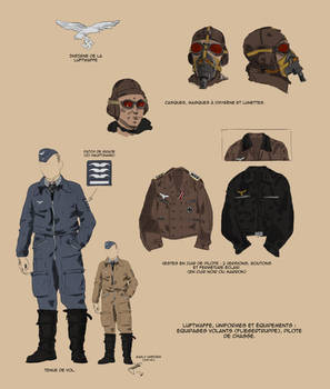 Luftwaffe pilot uniform